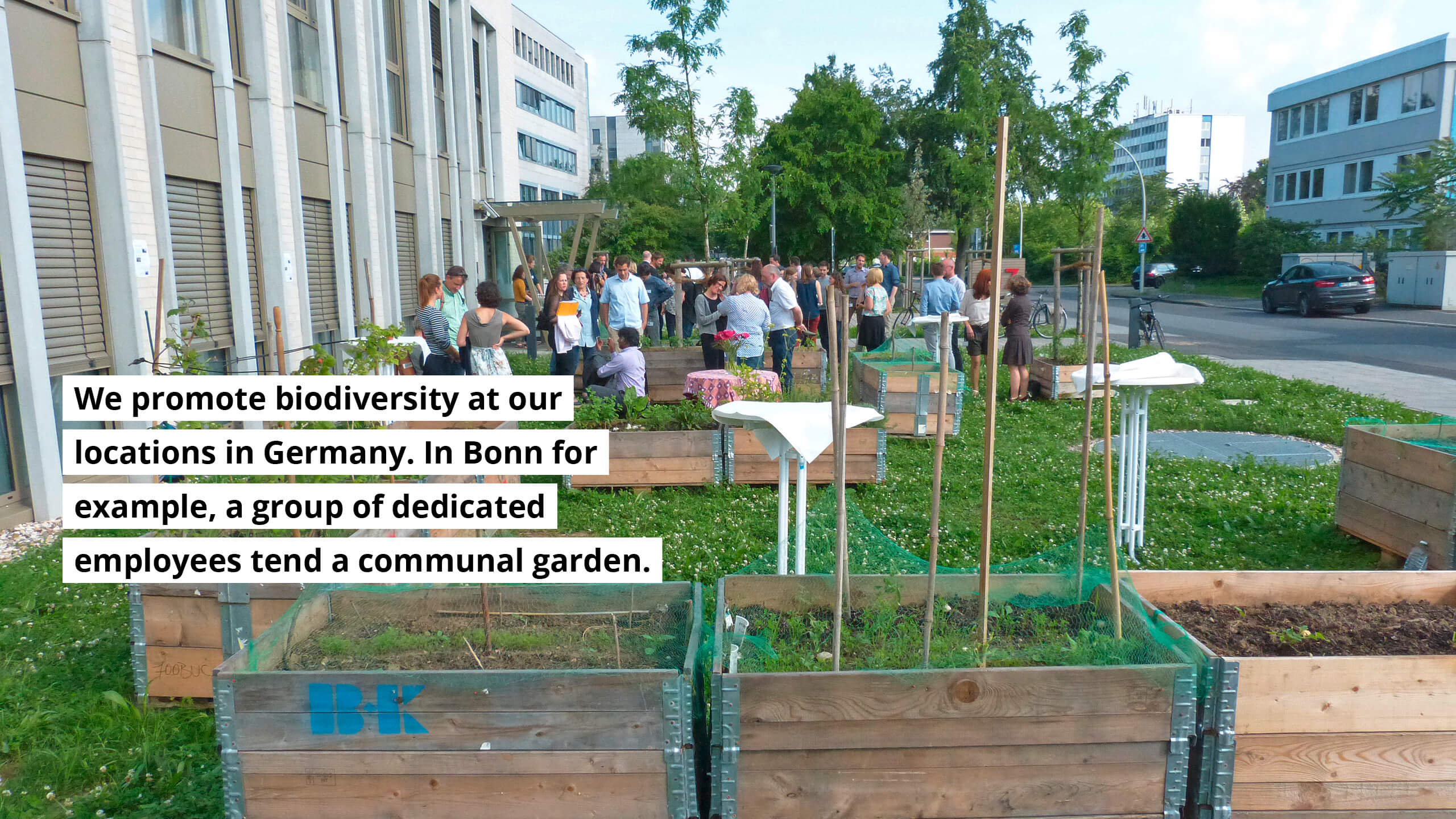 We promote biodiversity at our locations in Germany. In Bonn for example, a group of dedicated employees tend a communal garden.